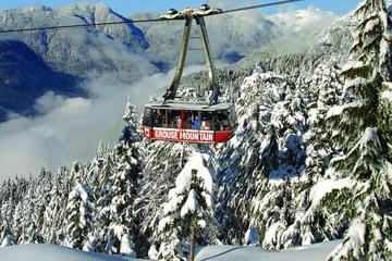 Grouse Mountain Admission - Alpine Experience