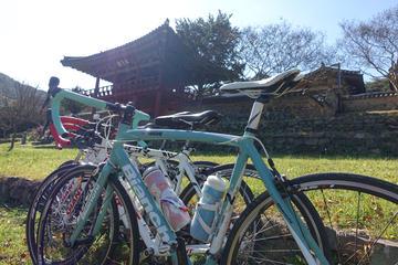 ソウル発宿泊付きプライベート サイクリング ツ…