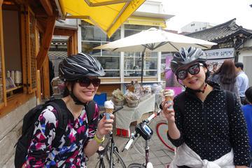 Afternoon Seoul City Bike Tour