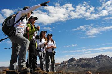Caminata al cráter del Monte Teide...