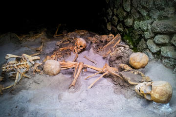 Private Herculaneum Walking Tour