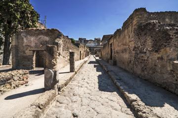 Tour privé: tour en train à Herculanum au départ de Sorrente