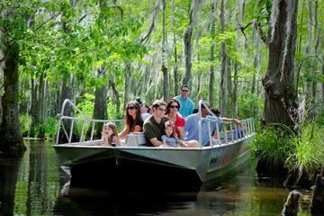 Excursão de barco pelo pântano e igarapé de Nova Orleans