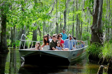 Honey Island Swamp Tour With Transport
