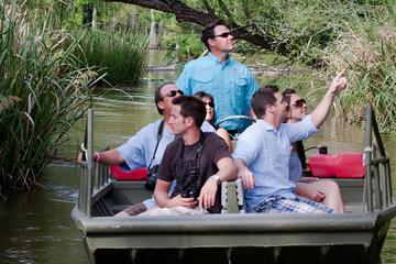 Visite privée: marais de Honey Island en bateau