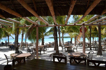 4-Hour Caribbean Beach Fun and Relaxation in Boca Chica from Santo Domingo