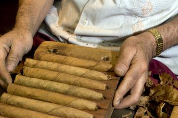 Tabacalera de Garcia Cigar Factory Tour from Santo Domingo