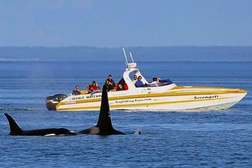 Crucero de avistamiento de ballenas y la fauna y flora de Victoria