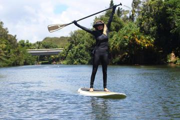 Clase de surf con remo en la orilla...