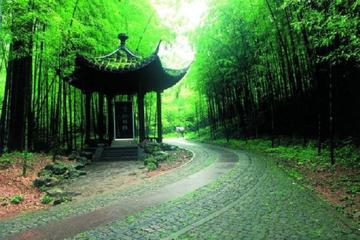 Hangzhou Tour with Boat Ride and Lunch