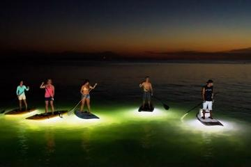 Illuminated Kayak or Stand-Up Paddleboard Tour