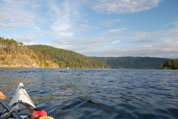 Vancouver Kayaking Tour
