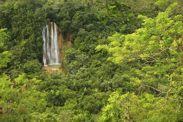 Cascata di El Limón e tour di una piantagione da Samaná