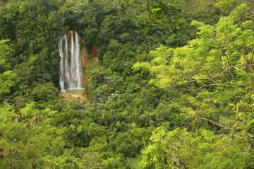 El Limón Waterfall and Plantation Tour from Samaná