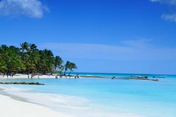 Excursion d'une journée complète à Punta Cana au départ de Samaná