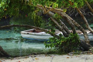 Visite du lagon bleu au départ de Puerto Plata