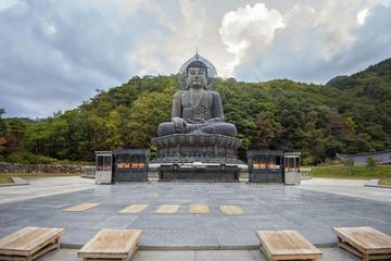 ソウル発で公州、釜山、麗水を巡る5日間韓国都市…