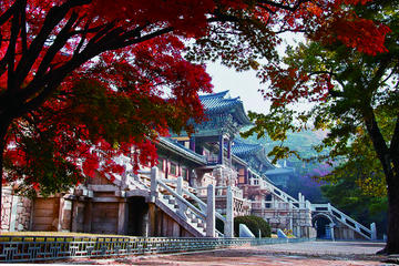 3-Day Tour of Eastern Korea from Busan to Seoul