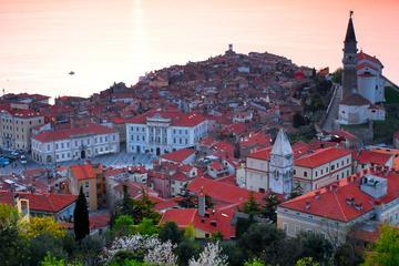 Excursión de un día por la costa eslovena desde Liubliana