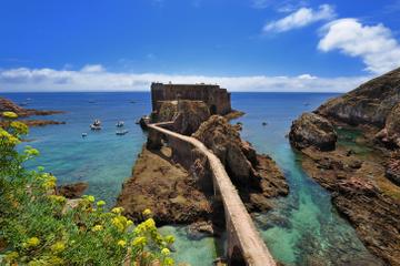 Excursión de un día en un grupo pequeño a la isla Berlenga Grande...