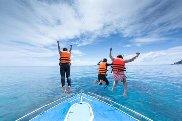 Ocean Bliss: excursão privada de dia...