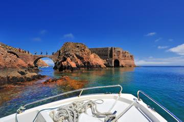 Visite privée: excursion d'une journée à l'île Berlenga Grande, au...