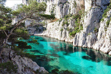 Cassis and Marseille Tour from