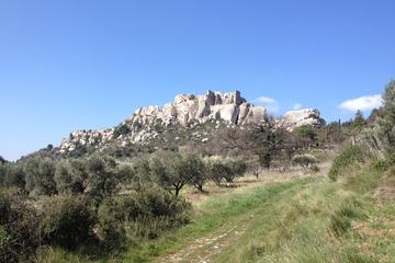 Excursion d'une demi-journée à Arles et aux Baux-de-Provence ou aux...