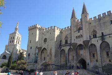 Excursion en bord de mer à Marseille: visite privée d'Avignon et des...