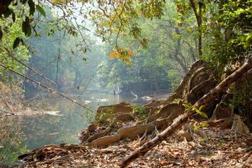 Excursão de 5 noites para Caminhada em Umphang saindo de Bangcoc
