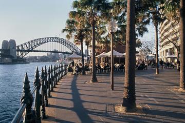 Sydney Shore Excursion: Sydney Walking Tour