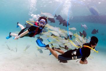 SNUBA-duiken in Montego Bay
