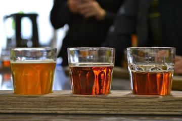 Excursión en bicicleta por Vancouver con cervezas y aperitivos