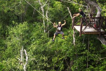 Cancun Adventure Tour in Selvatica: Zipline, Aerial Bridge, Buggy...