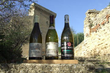 Full day Private Wine Tour from Avignon