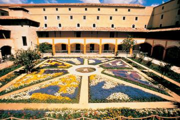 Visite du musée Van Gogh et Carrières de Lumières au départ d'Avignon