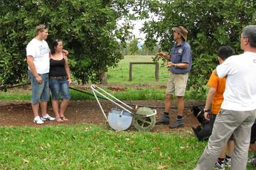 Atherton Tablelands Food and Wine Tour from Cairns