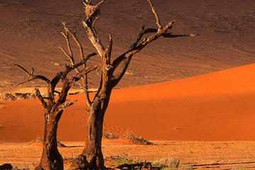3 días Sossusvlei Safari Tours...
