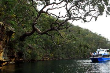 Nationalpark Ku-ring-gai Chase...