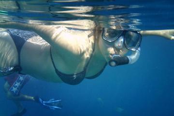 Recorrido de buceo por Los Cabos...
