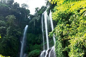 Le meilleur du Bali Lemukih Waterfall...