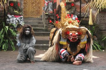 Best Of Bali Tour: Culture Customized
