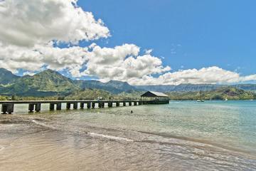 プライベートツアー: カウアイ島の滝、 キラウエア灯台、ハナレイ湾、マクアビ…