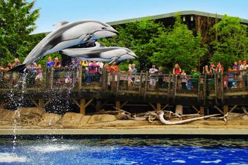 バンクーバー水族館への入場