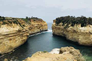 Great Ocean Road Expedition