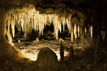 Escapada de un día a las cuevas Cabachuelas de Morovis desde San Juan...