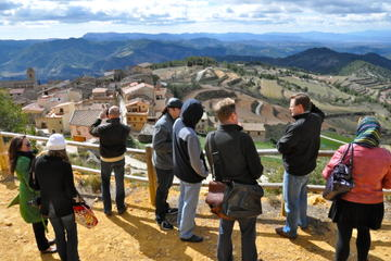 Priorat Wineries Tour from Barcelona Including Wine Tastings and Lunch