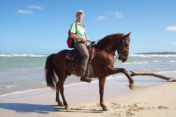 Horseback Riding from Punta Cana to Uvero Alto Beach