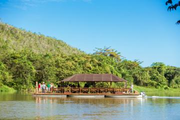 Isla Saona Deluxe- Rio Chavon and Lobster