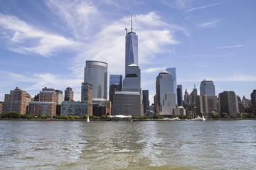 Eendaagse sightseeingtour met gids door New York